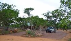 Small Holding for sale in Waterberg 980382 : photo#86