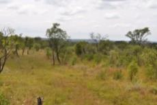 Small Holding for sale in Waterberg 980382 : photo#27