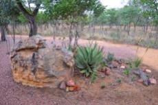 Small Holding for sale in Waterberg 980382 : photo#75
