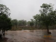 Small Holding for sale in Waterberg 980382 : photo#89