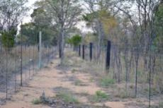 Small Holding for sale in Waterberg 980382 : photo#50