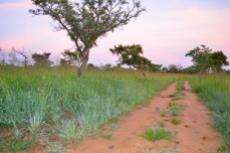 Small Holding for sale in Waterberg 980382 : photo#97