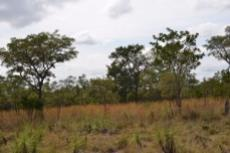 Small Holding for sale in Waterberg 980382 : photo#23