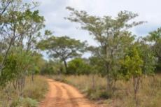Small Holding for sale in Waterberg 980382 : photo#7