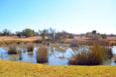 Farm for sale in Vaalwater 994785 : photo#2