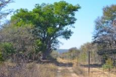 Farm for sale in Vaalwater 994785 : photo#31