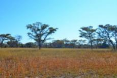 Farm for sale in Vaalwater 994785 : photo#33