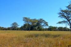 Farm for sale in Vaalwater 994785 : photo#35