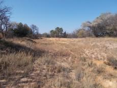 8 Bedroom Farm for sale in Vaalwater 997815 : photo#27